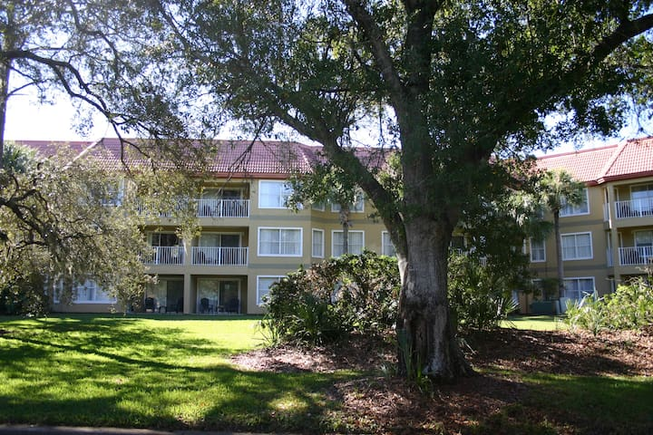 In the Heart of ALL Attractions-1 Bedrm Condo/OBD