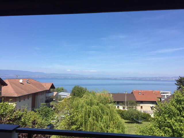 Appartement 75m2 au calme super vue - Évian-les-Bains - Apartment