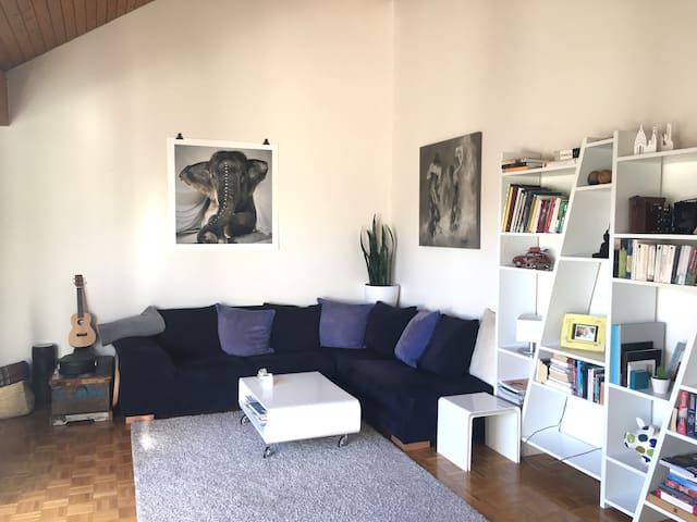 Central charming appartment Geneva - Cenevre - Daire
