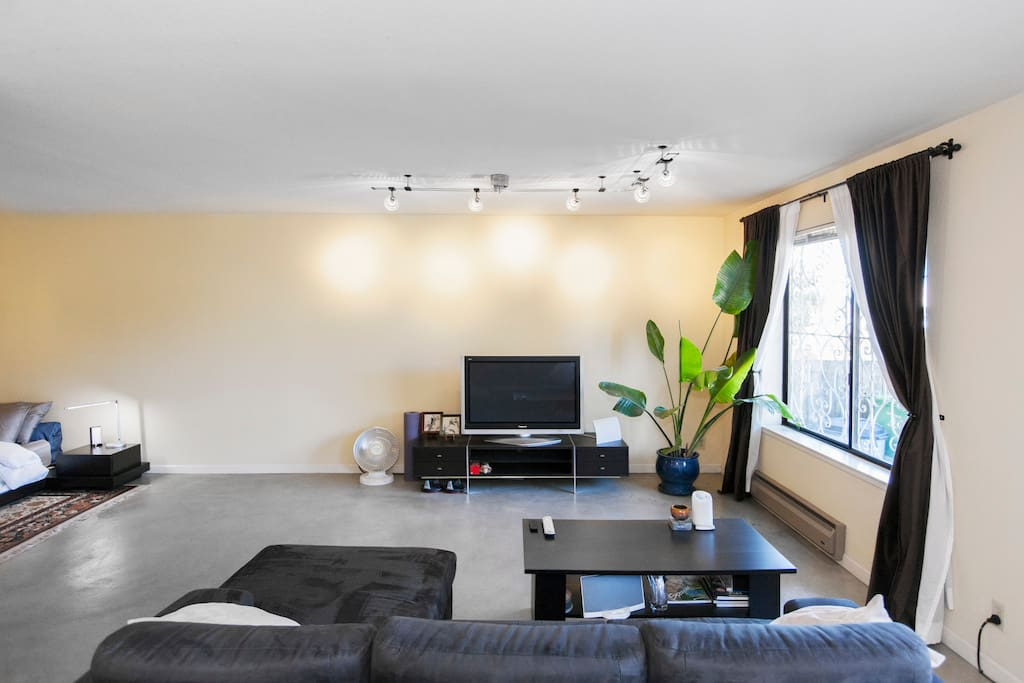 """Living room with microfiber chaise sectional and 42"""" plasma TV (Google Chromecast + Amazon Fire Stick for your use)"""