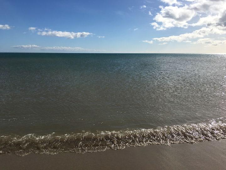 Le dauphin se situe à St Pierre la Mer