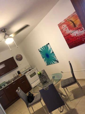 Hato Rey Apartment excellent location
