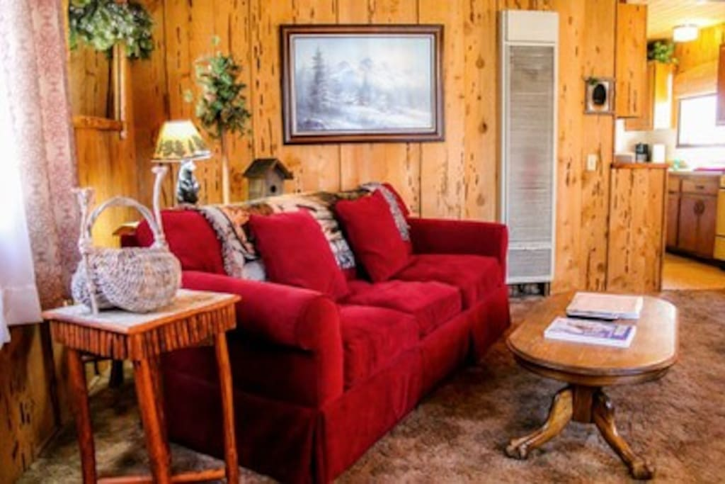 Beary Comfy cabin for 4-6