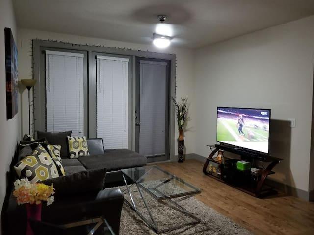 Entire Luxury Apartment
