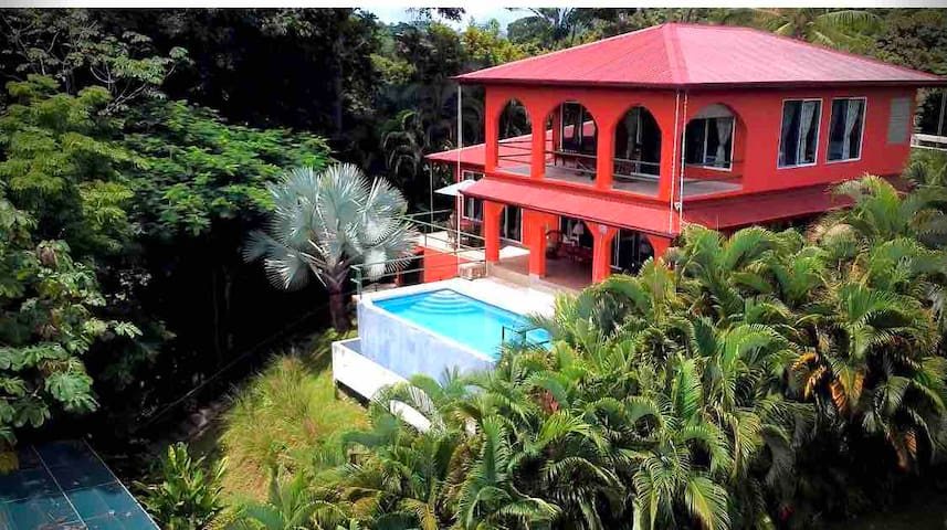 Jungle home bordering National Park now renting!