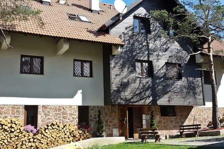 Vila Plamenac - apartman A11 - Divčibare