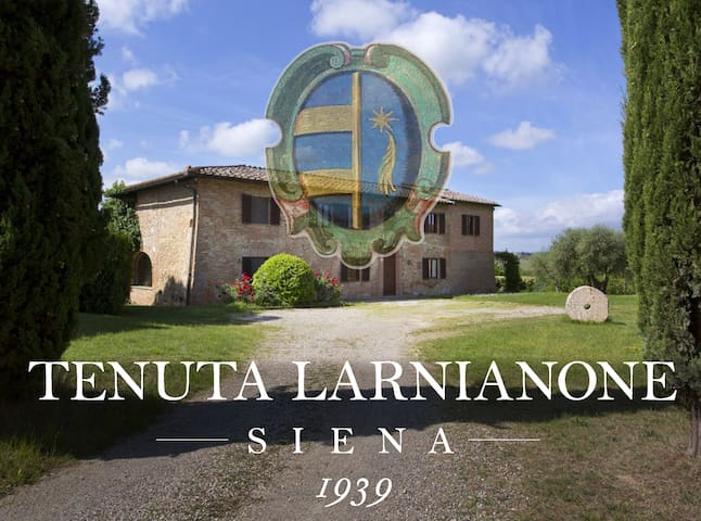 Country-house in wine estate 5km from Siena