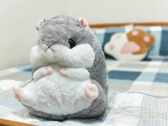FaFa 發發小屋-動物狂響曲