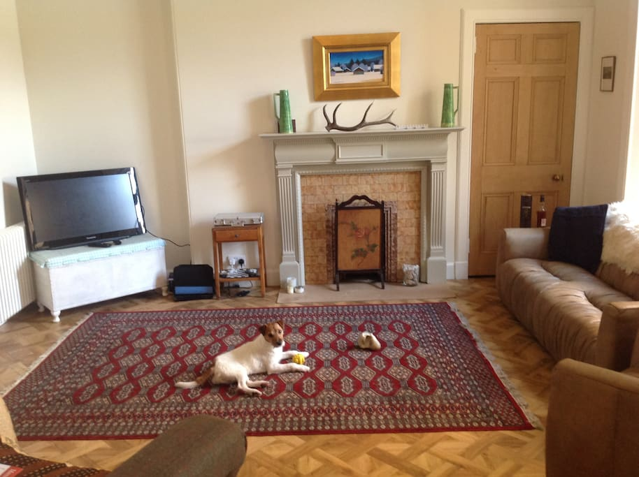 Rear Livingroom with dog lazing on rug