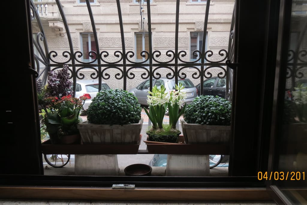 Window in front of Via Nullo
