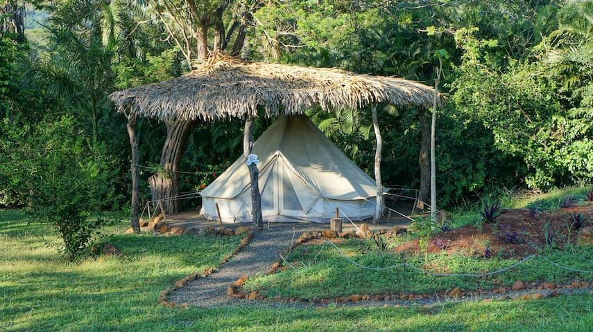 Hostel Alouatta - shared safari tent with 4 beds