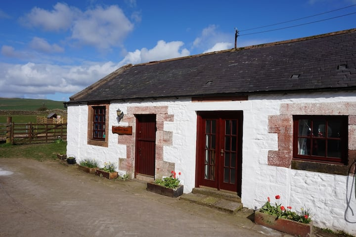 The Cheese House Self Catering Cottage