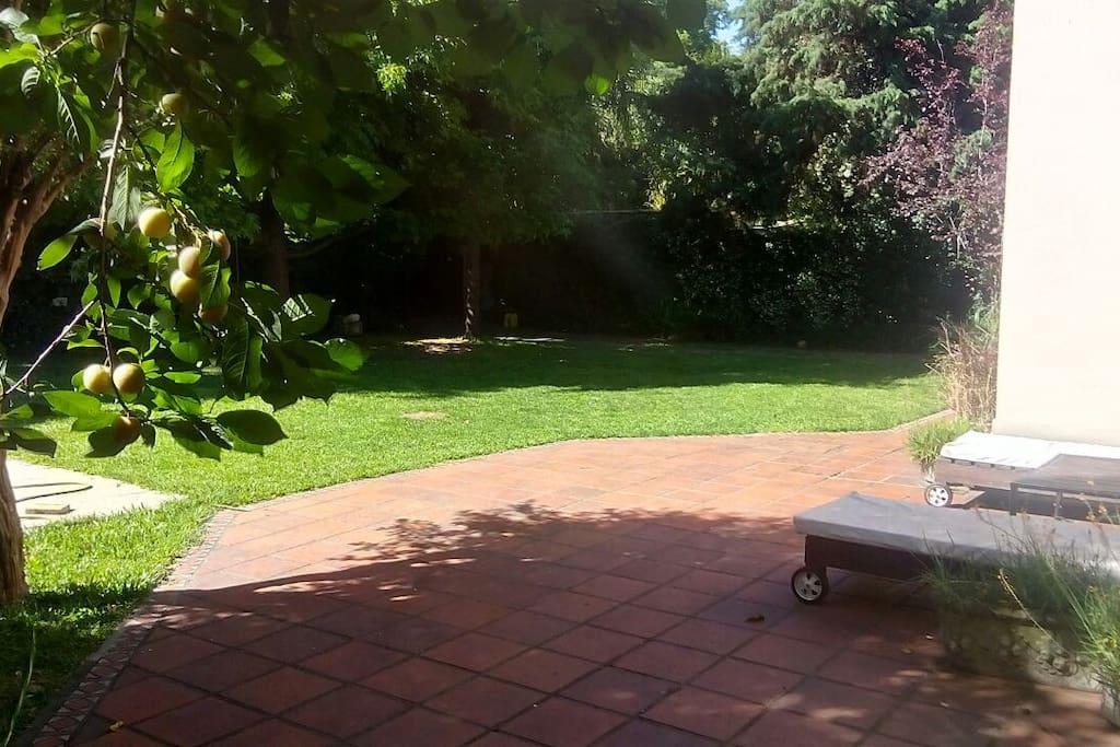 Vista del jardín y patio delantero.