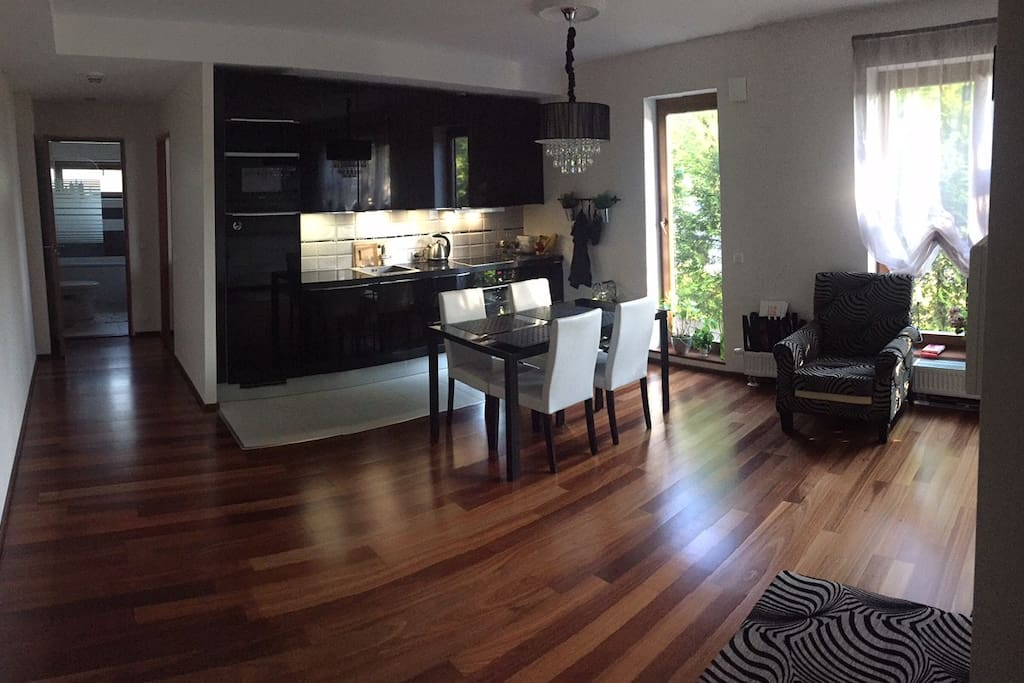 Spacious and beautiful living and cooking area