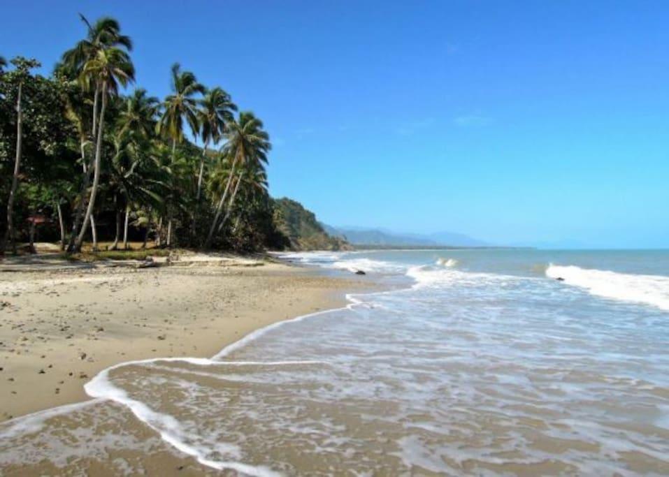 Hermosas y paradisíacas playas