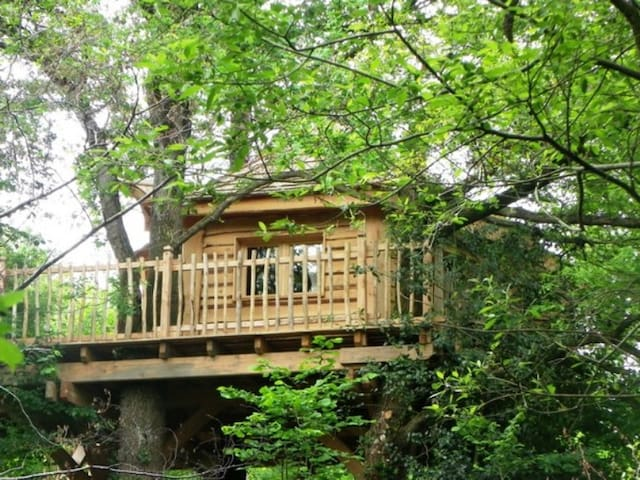 cabane dans les arbres proche des c tes vend ennes treehouses for rent in beaulieu sous la. Black Bedroom Furniture Sets. Home Design Ideas