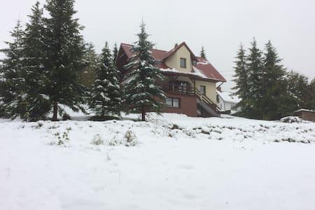 Dom na Mosornym Groniu - Zawoja