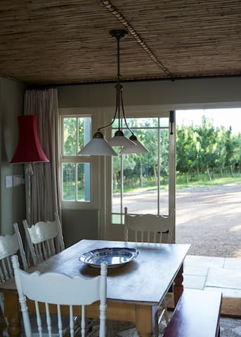 View of apple orchards from the kitchen table