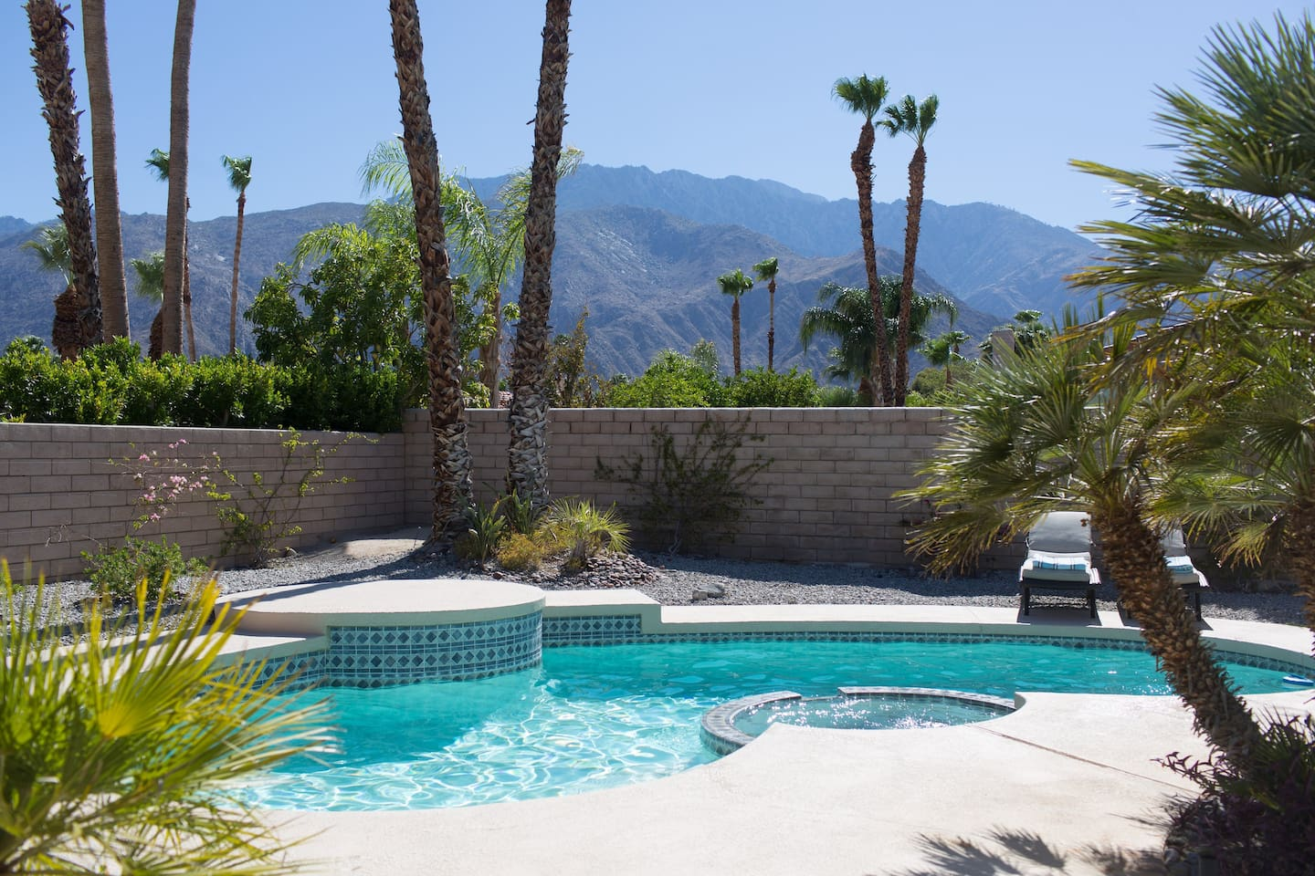 Back yard with unobstructed mountain view (no wires like most of Palm Springs backyards!)