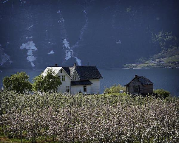"""Alvavoll Gard """"potetkjellaren"""" - Lofthus - Apartamento"""