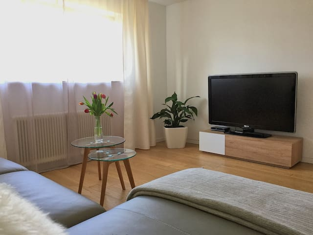 Charming apartment with private garden area - Hohenweiler - Apartament