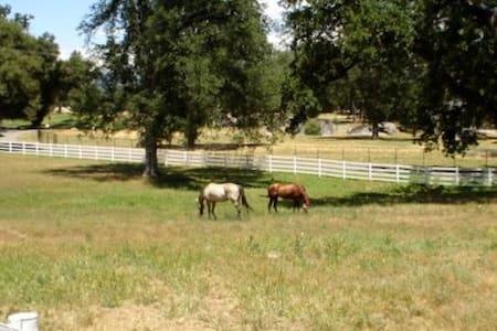 Equestrian Estate near Yosemite/Oakhurst/Bass Lake - 阿瓦尼(Ahwahnee)