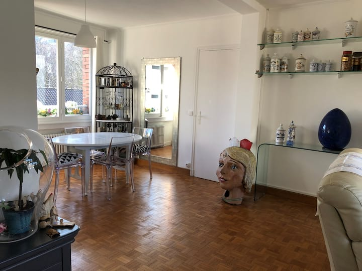 Appartement T2 +clim70m2  centre-ville de Lille