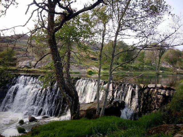 bathe under the falls