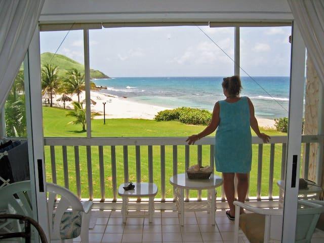 Caribbean Breeze - Luxury Beachfront Condo