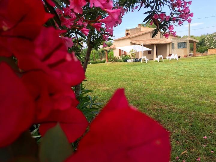 Villa Le Bouganville Tropea