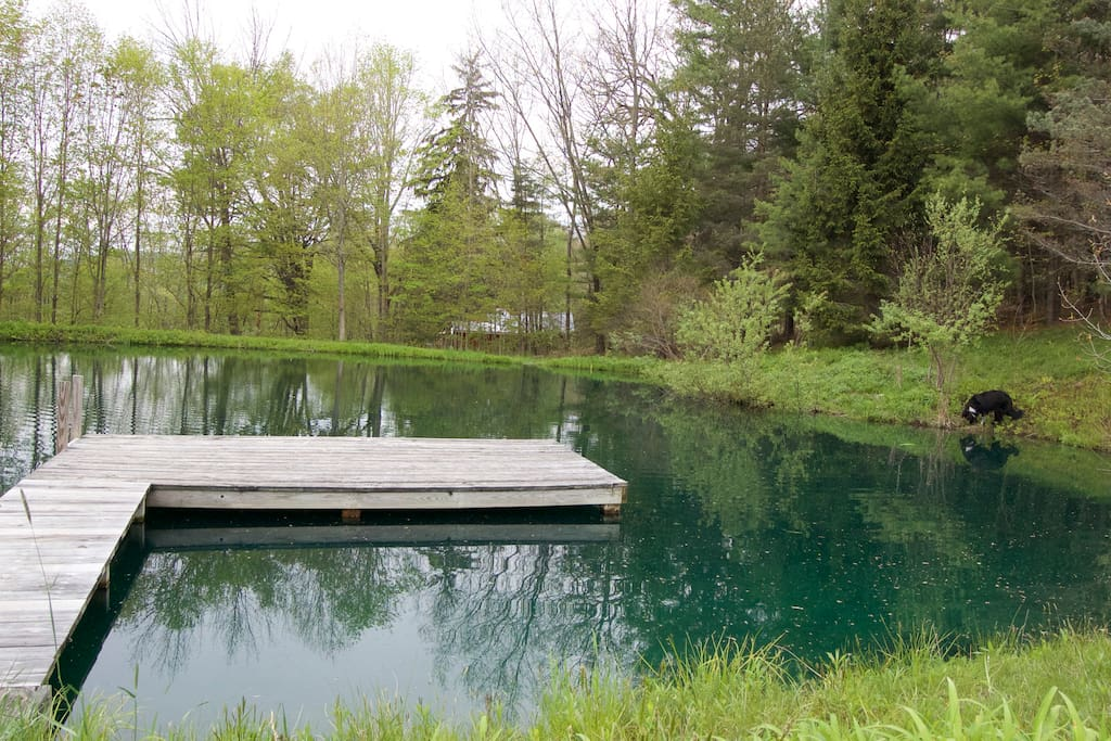 The Perfect Outdoor Swimming Spot in Spring