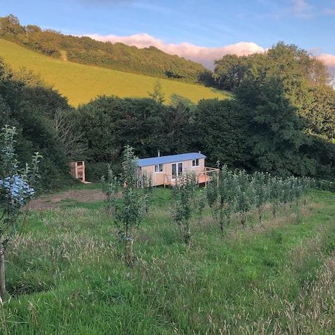Breathtaking Off-Grid Cabin in Rural Devon