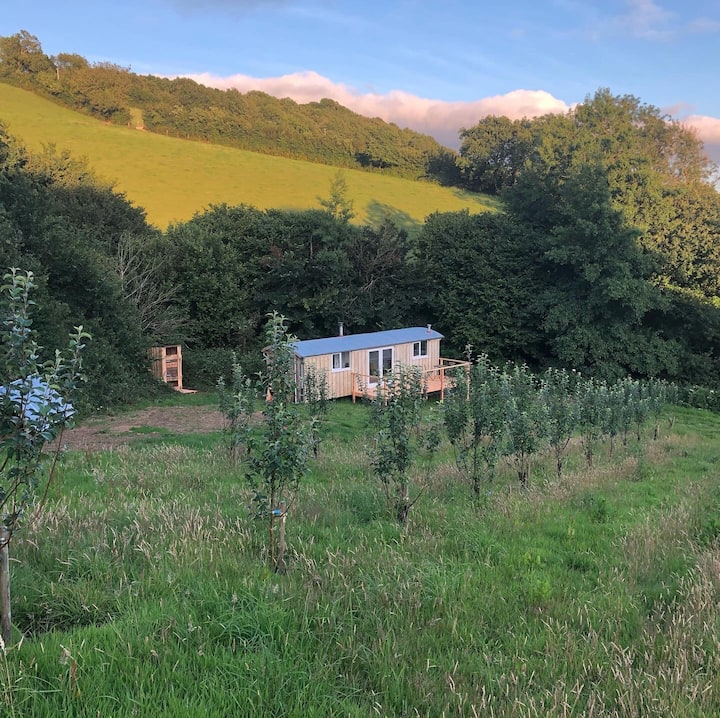 Breathtaking Off-Grid Cabin in Rural Devon