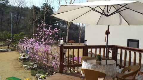 sala de balcón de ciprés (izquierda)
