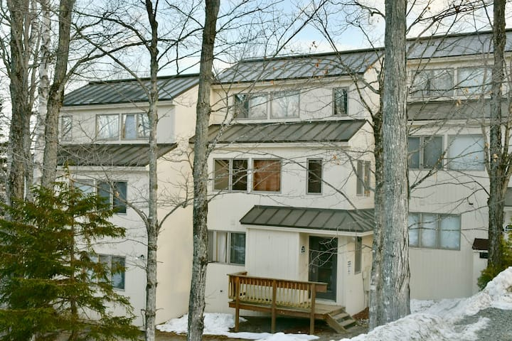 Ski In, Newly remodeled condo! Book now for winter