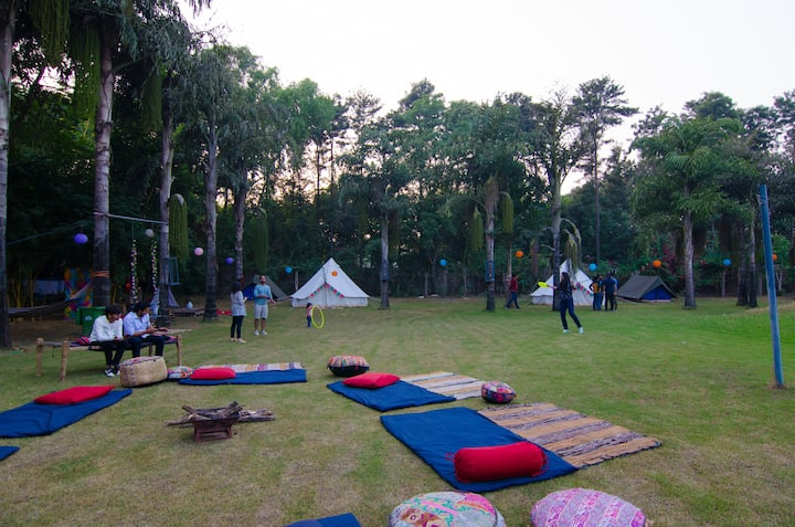Matata @ Hushnest x Gurgaon: Pet-friendly Glamping