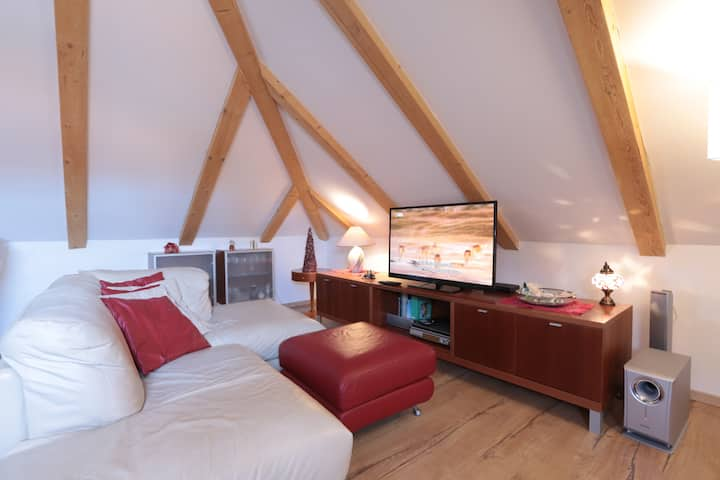 Romantic Attic studio in the center