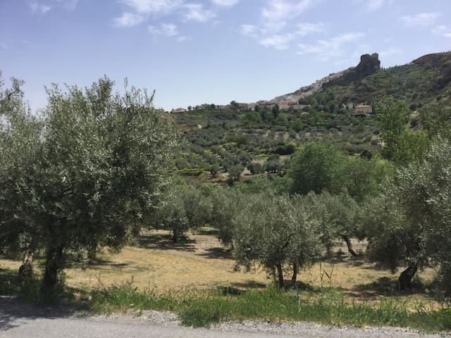 2 rooms in spacious mountain house near Granada