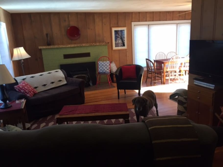 Living room with large flat screen TV, wood stove fireplace, games, movie library and more.  Dog not included.