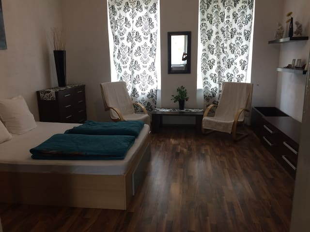 Charming apartament @ city centre - Timisoara - Apartament