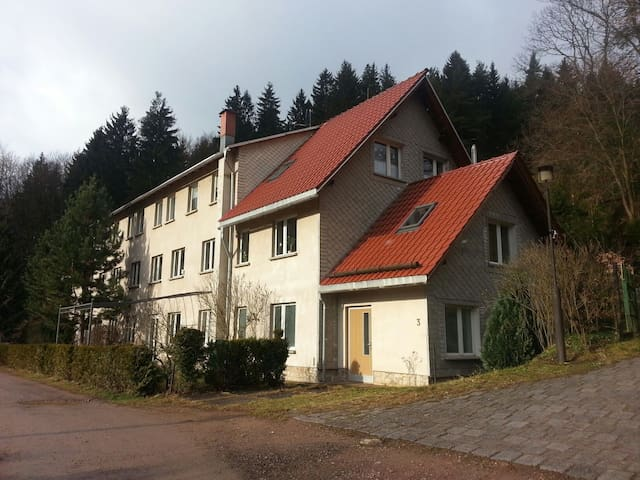 Tolles Appartement  in Alleinlage - Frankenhain - Appartement