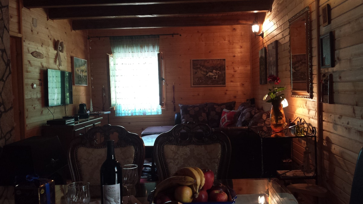 getranke bar furs wohnzimmer lodge house tara in kolasin mne houses for rent kola - Bar Furs Wohnzimmer