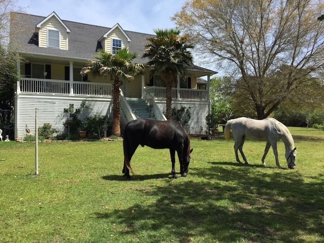 Del Mar Plantation,6 ac horse Farm/R2,  near Beach
