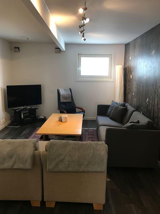 Romslig stue med peis