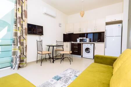 Luxury One-Bedroom Apartment Mountain View