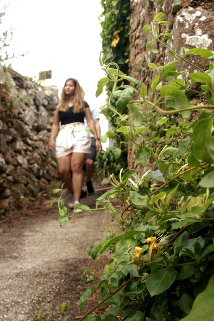 Geting lost in the sintra secrets places