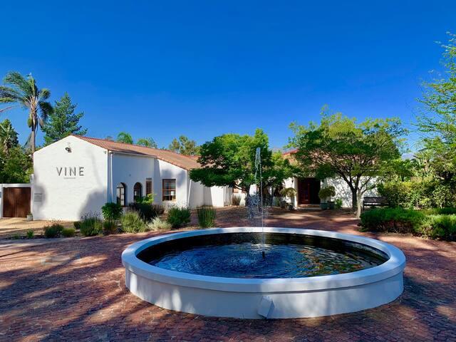 Junior Suite @ Vine Guesthouse Stellenbosch