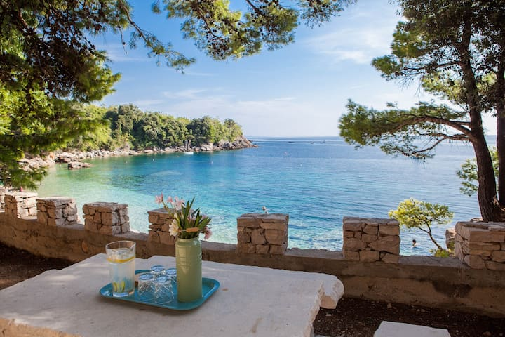 Five Bedroom Villa on Peljesac- American Owner
