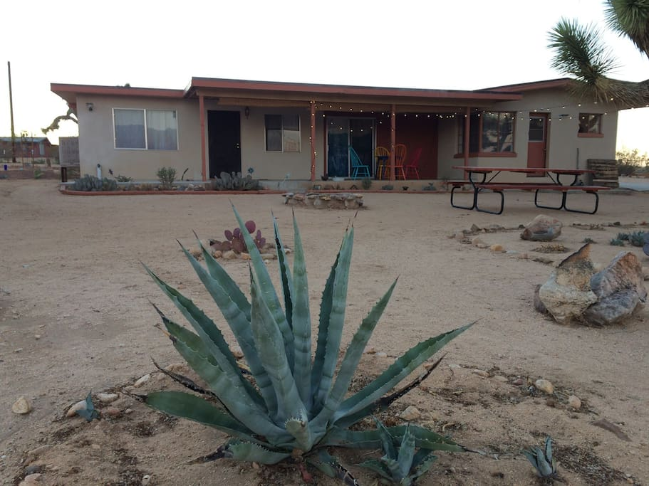 The front yard, at sunset, with mature agaves, a beautiful firepit and space to dine al fresco.