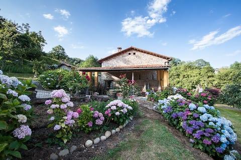 Caserío tradicional asturiano. Casa rural 8 pers.